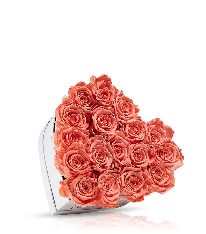 Rosenbox in Herzform (weiß) klein - verschiedene Rosenfarben