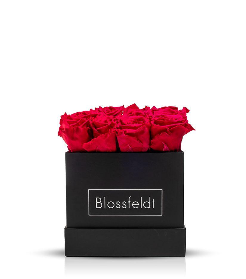 Rosenbox Quadrat (schwarz) - verschiedene Rosenfarben
