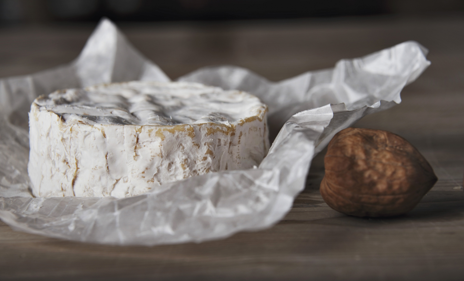 Feinster Käsegenuss